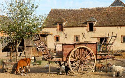 Visite et ateliers à la Ferme du Château de Saint Fargeau